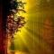 light-of-god-1344072566_b.jpg